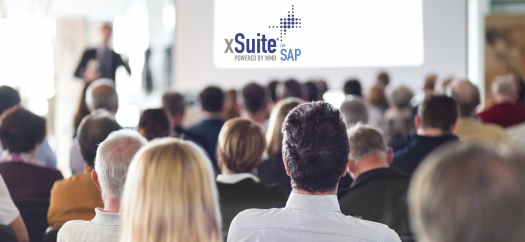 xSuite Experience Day, Netherlands