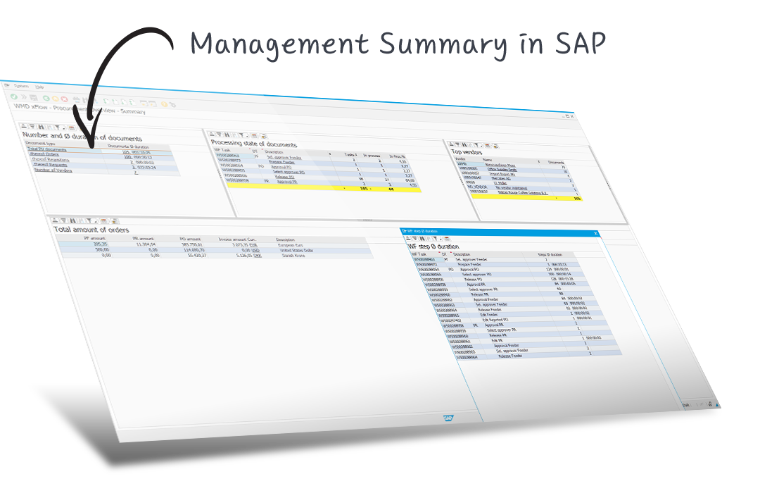 management summary sap